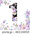 花 フラワー お花のイラスト 46216830