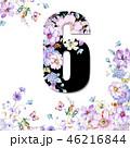 花 フラワー お花のイラスト 46216844