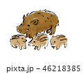 亥 猪 年賀状素材のイラスト 46218385