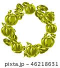 りんご アップル リンゴのイラスト 46218631
