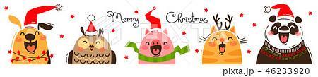 Happy animals in Santa hats. Joyful dog, owl, pig, cat and panda. Merry Christmas banner. 46233920