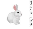 うさぎ ウサギ 兎のイラスト 46235144