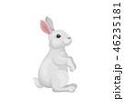 うさぎ ウサギ 兎のイラスト 46235181