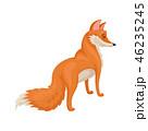 きつね キツネ 狐のイラスト 46235245