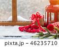 メリー クリスマス xマスの写真 46235710
