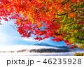 富士山 紅葉 秋の写真 46235928