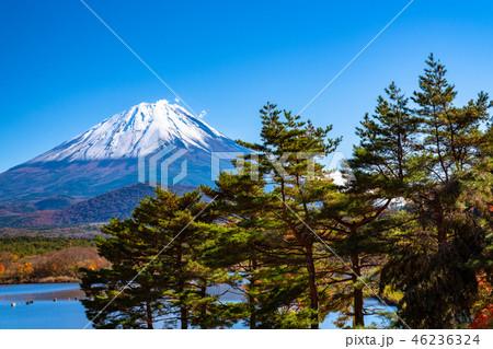 《山梨県》富士山・精進湖より 46236324