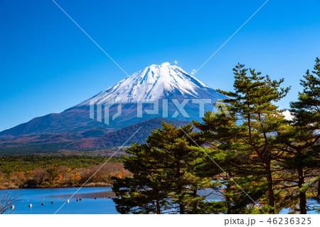 《山梨県》富士山・精進湖より 46236325