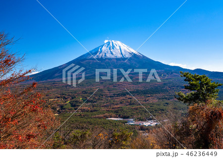 《山梨県》富士山・紅葉台より 46236449