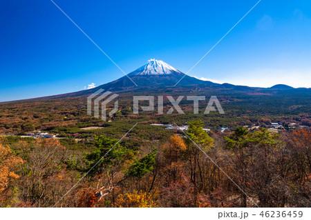 《山梨県》富士山・紅葉台より 46236459