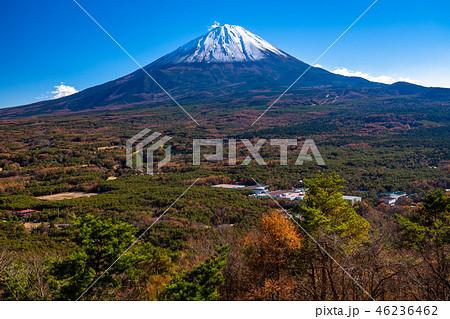 《山梨県》富士山・紅葉台より 46236462