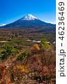 《山梨県》富士山・紅葉台より 46236469