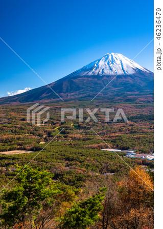 《山梨県》富士山・紅葉台より 46236479