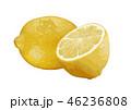 レモン03 46236808