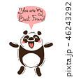 ぱんだ パンダ 動物のイラスト 46243292