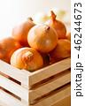 玉葱 野菜 食材の写真 46244673