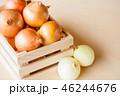 玉葱 野菜 食材の写真 46244676
