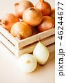 玉葱 野菜 食材の写真 46244677