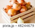 玉葱 野菜 食材の写真 46244679