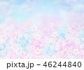 桜 春 花のイラスト 46244840
