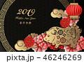 2019 チャイニーズ 中国人のイラスト 46246269
