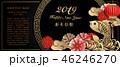 2019 チャイニーズ 中国人のイラスト 46246270