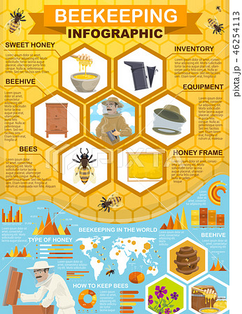 Beekeeping honey collection, apiary infographic 46254113