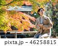女性 秋 抹茶の写真 46258815