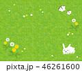 春 うさぎ 芝生のイラスト 46261600