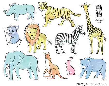 動物セット 46264202