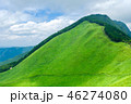 曽爾高原 高原 夏の写真 46274080