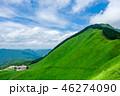 曽爾高原 高原 夏の写真 46274090