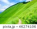 曽爾高原 高原 夏の写真 46274106