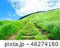 曽爾高原 高原 夏の写真 46274160