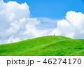 曽爾高原 高原 夏の写真 46274170