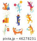 パーティー わんこ 犬のイラスト 46278231