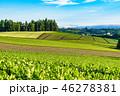 夏 田園風景 畑の写真 46278381