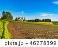 夏 田園風景 畑の写真 46278399