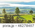 夏 田園風景 畑の写真 46278407