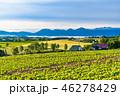 夏 田園風景 畑の写真 46278429
