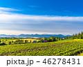 夏 田園風景 畑の写真 46278431
