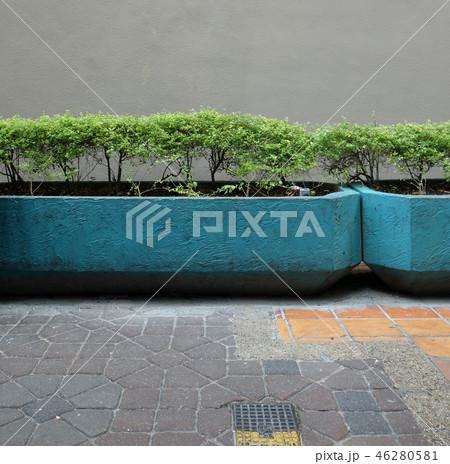 街角の風景 植物 植え込み 壁 Street corner 46280581