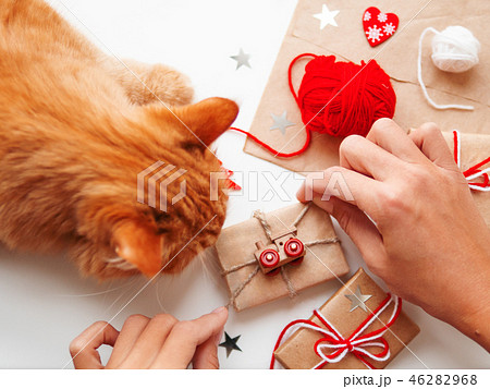 Woman and cat wrapping DIY presents in paper.  46282968