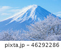 樹氷 冬 富士山の写真 46292286