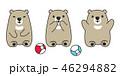 くま クマ 熊のイラスト 46294882