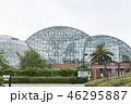 熱帯植物園 46295887
