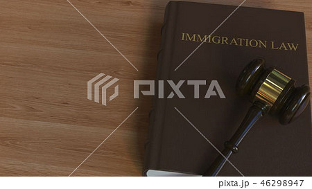 Judge gavel on IMMIGRATION LAW book. Conceptual 3D rendering 46298947
