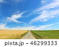 青空 北海道 畑の写真 46299333