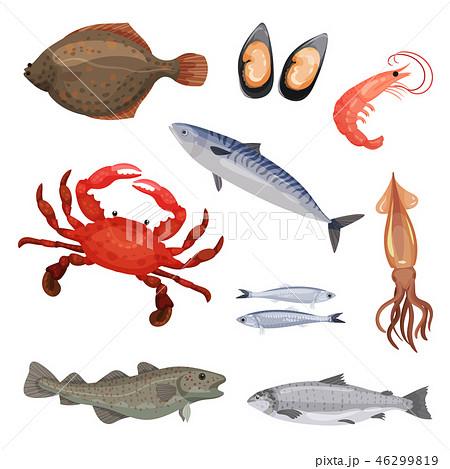 Set of various seafood. Fish, crab and mollusks. Marine animals. Sea creatures. Detailed flat vector 46299819