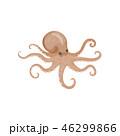 シーフード 海の幸 魚介類のイラスト 46299866